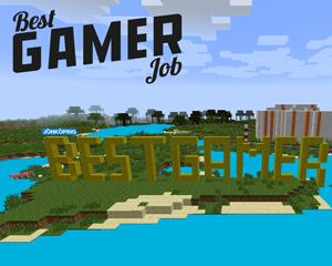 Best Gamer Job